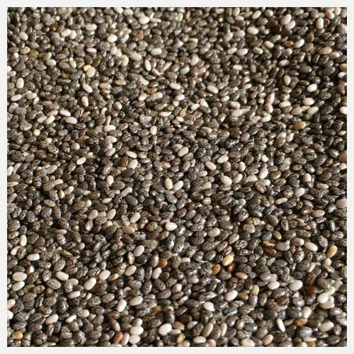Black-Chia-Seeds
